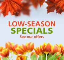 umrah low season
